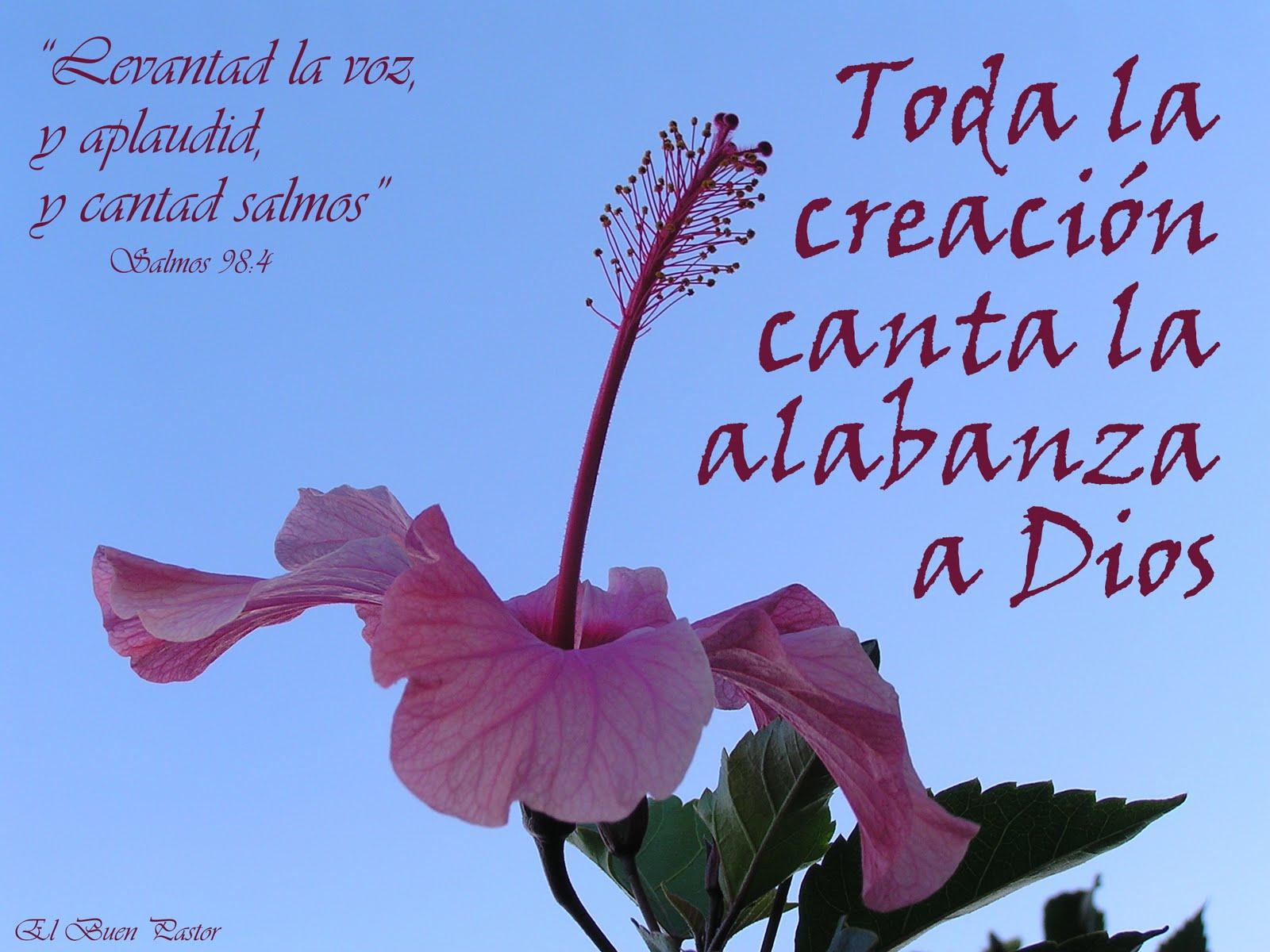 salmos_98_4